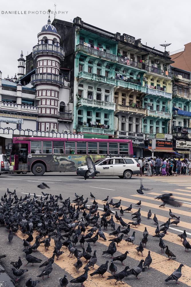 Danielle_Photography_SA74-Vietnam.jpg