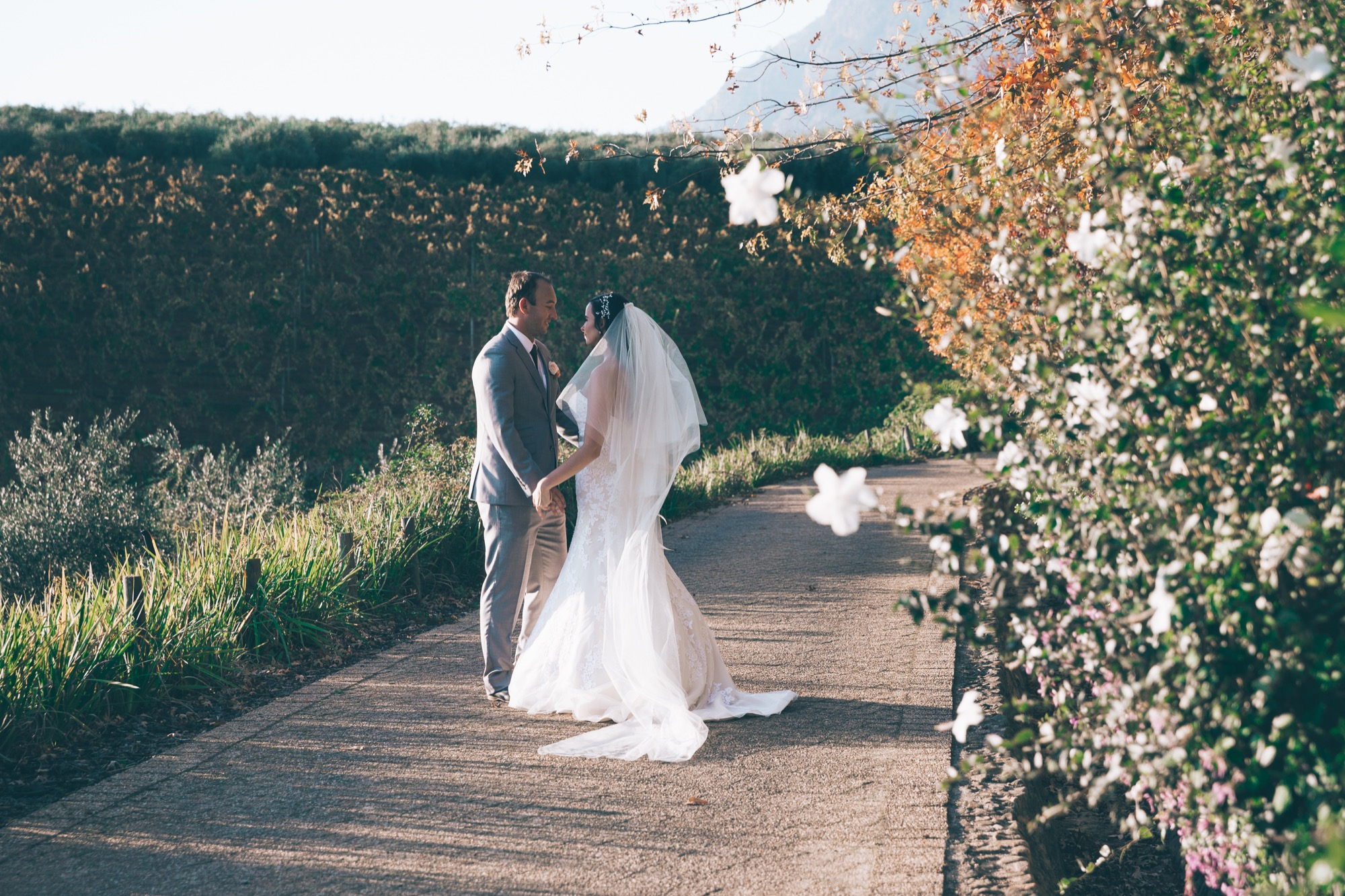 @DaniellePhotographySA_Wedding_Tokara_Laura&Daniel-41.jpg