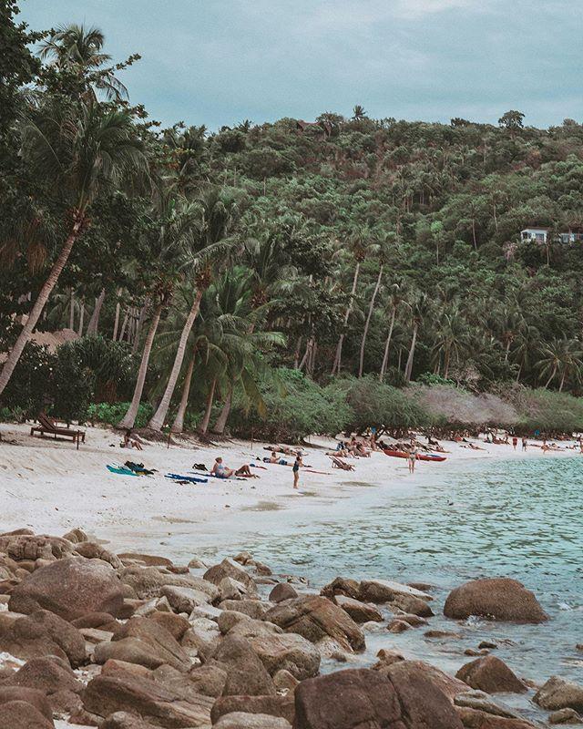 Shark Bay 🌊 #thailand #kohtao