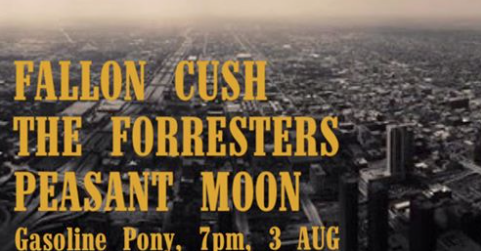 The Forresters will be playing a set next Wednesday the 3rd with fellow alt country popsters Fallon Cush and Peasant Moon at the Gasoline Pony bar in Marrickville.