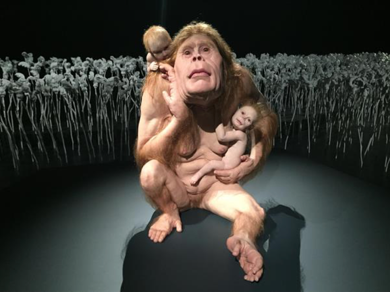 Pictured is Kindred, 2017, installation view QAGOMA exhibition Curious Affection by Patricia Piccinini.