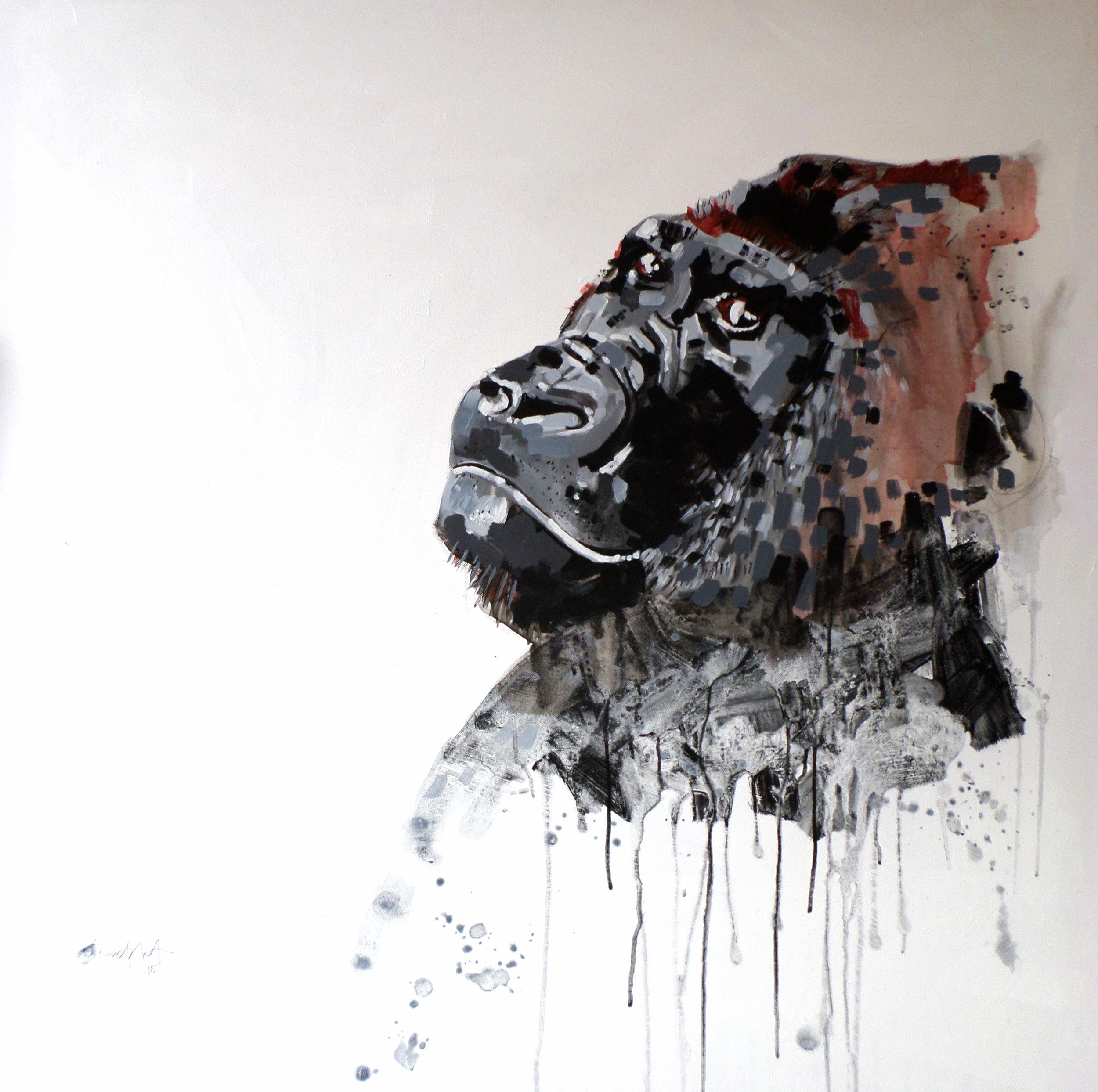 ' Gorilla '