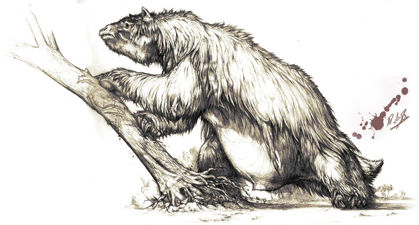 Megatherium, aka ancient ground sloth
