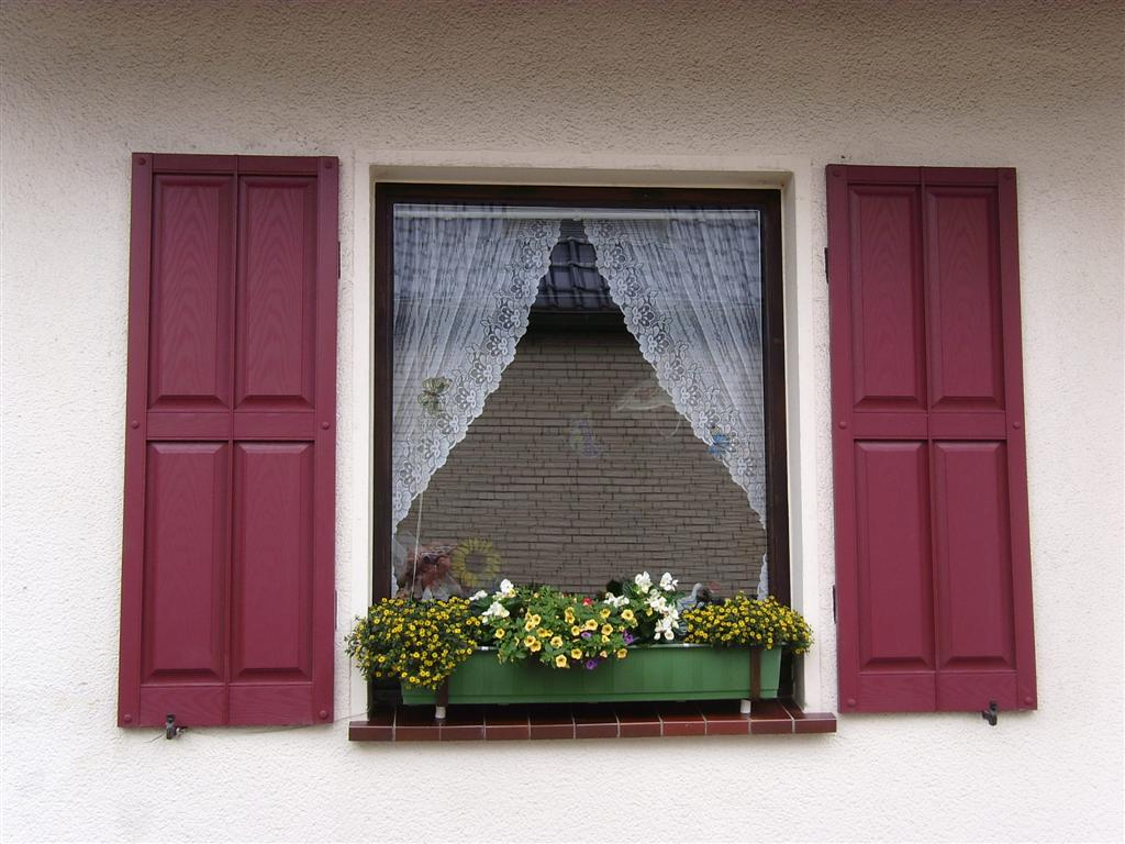 Exterior External Window Shutters (104).JPG