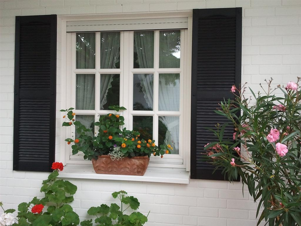 Exterior External Window Shutters (111).jpg