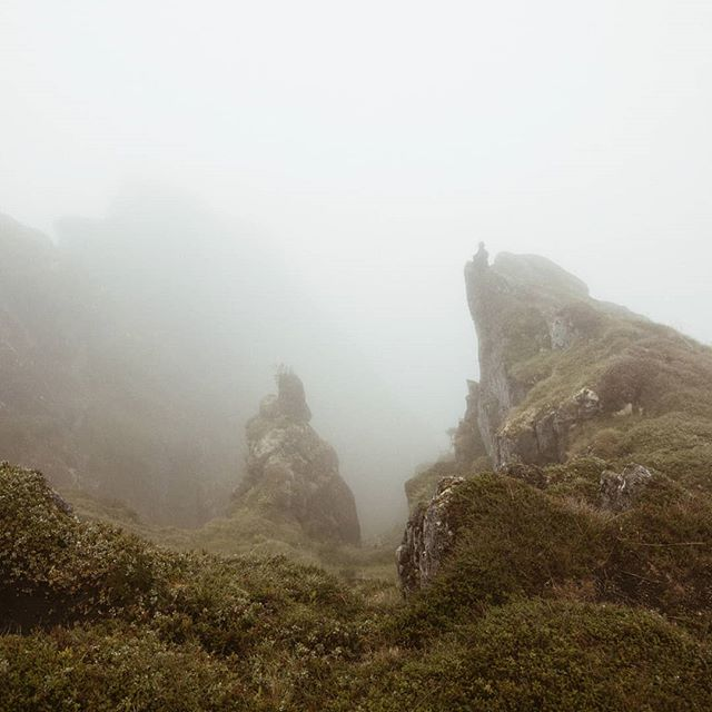 From yesterday's hike - can you spot me, swallowed by the fog? . . . #lofoten #theartofslowliving #travelaroundtheworld #neverstopexploring #folkgood #wanderlust #dametraveler #wowplaces #darlingescapes #roamtheplanet #shetravelz #womenwhotravel