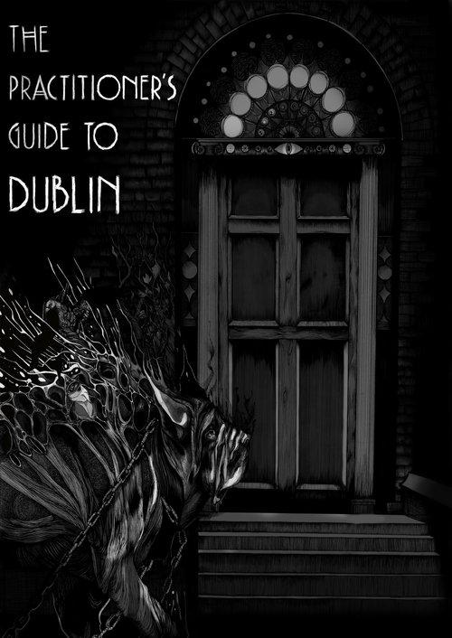 practitioner's guide.jpg