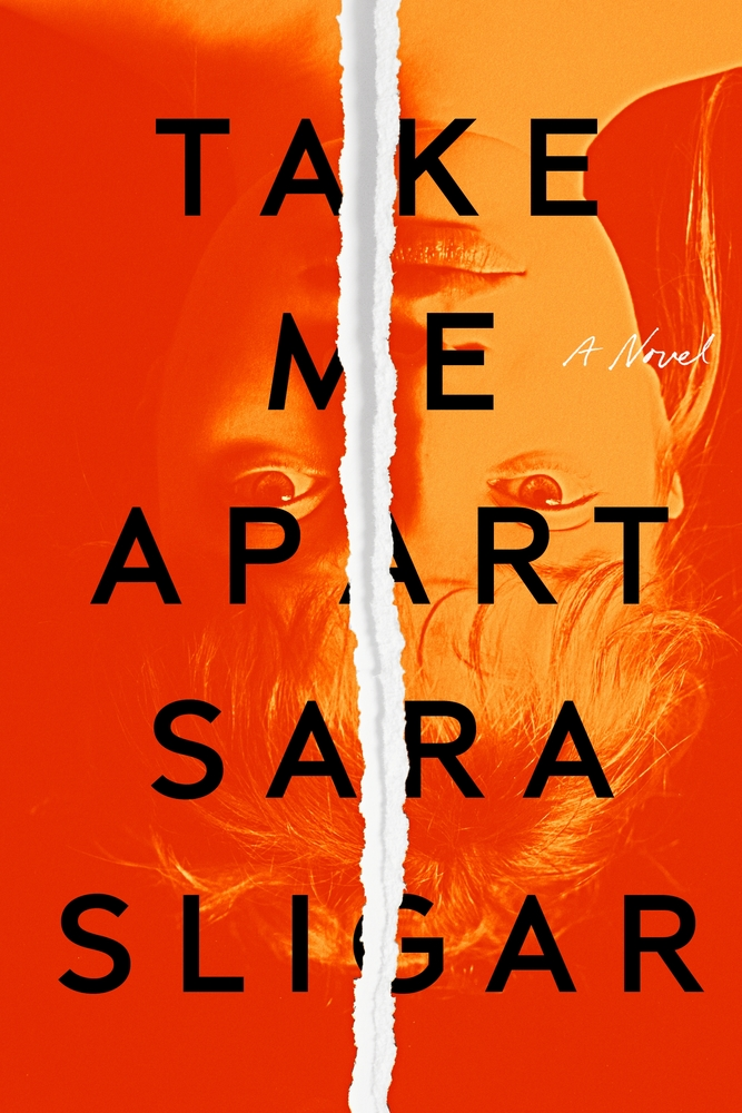 Take Me Apart | Judging Books by their Cover: 2020 Releases | TBR, etc.