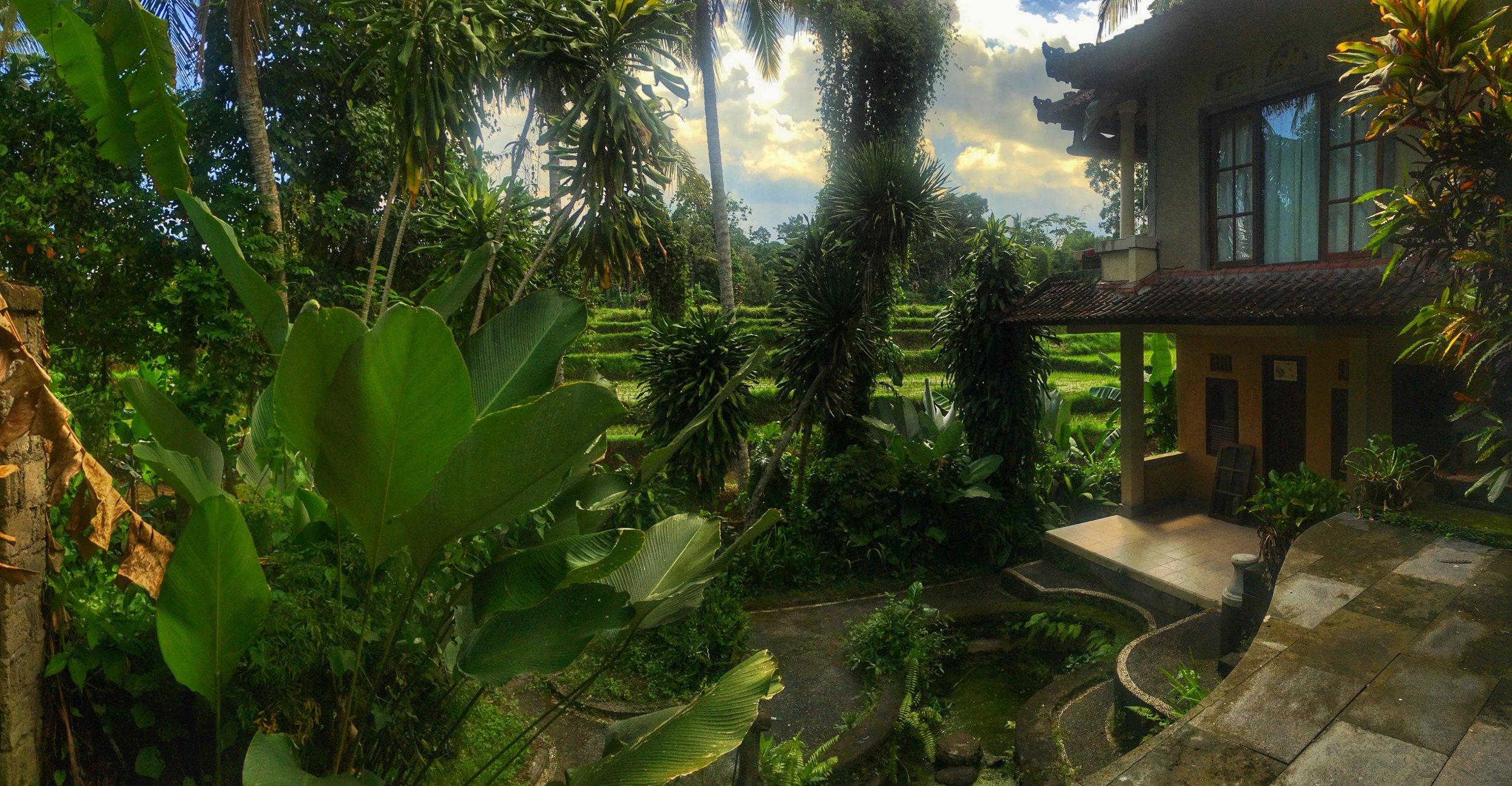 Photos from  Kubu Rama AirBnb  in Ubud, Bali, 2016.