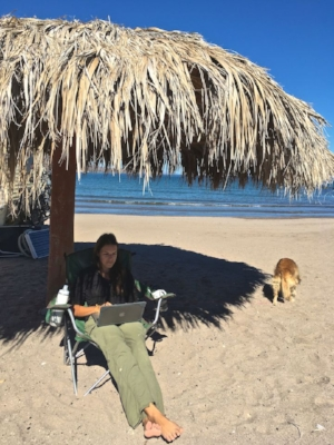 Blogging while relaxing on the beach.