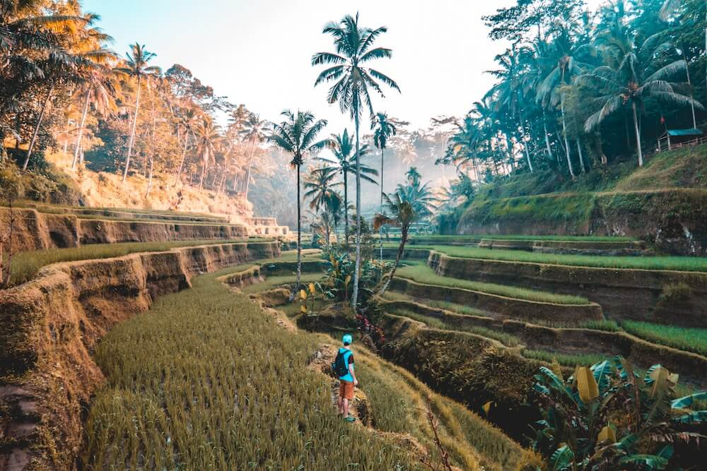 best country to visit in southeast asia.jpg