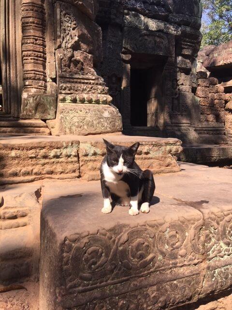 Kampot travel Cambodia.JPG