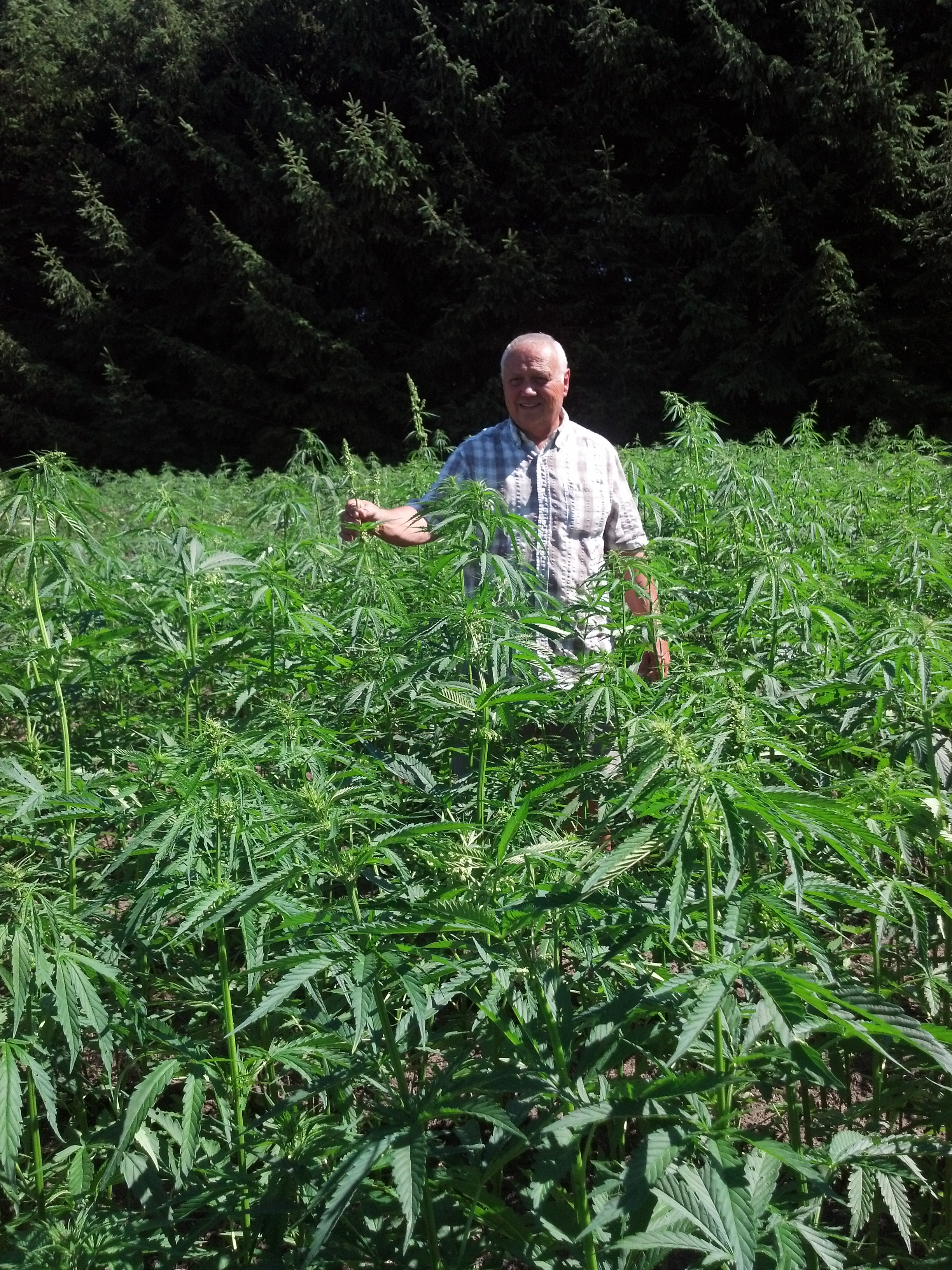 """I constantly keep my finger on the pulse of the industry to find better ways to identify individuals high in CBD and low in THC to keep seed lines compliant with regulatory requirements."" - John Baker, CBD Baker - Stirling, Ontario"