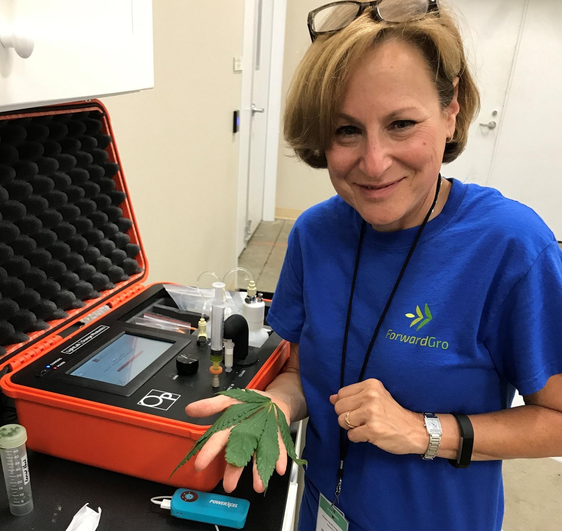 Deb Kimless, MD, Medical Director at ForwardGro, runs a fan leaf sample on their LightLab Cannabis Analyzer.