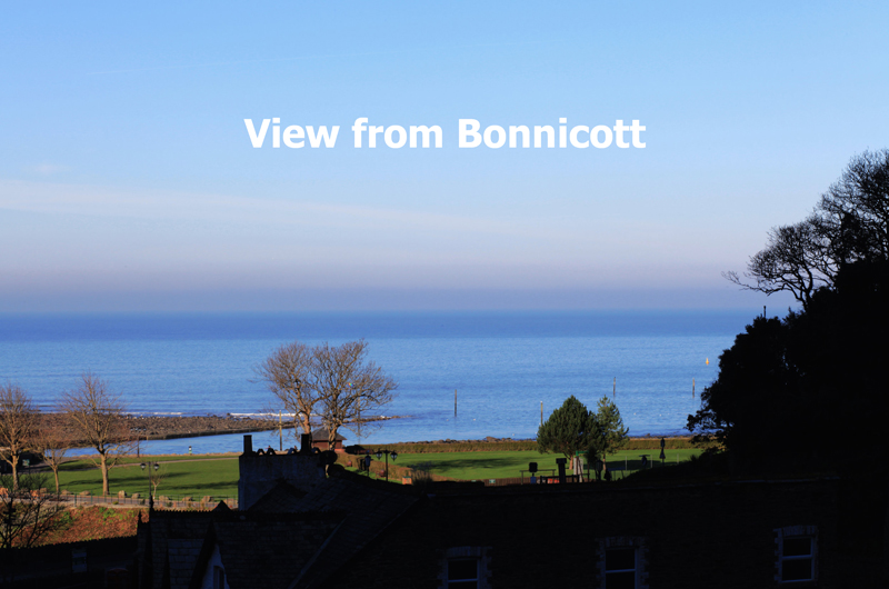 bonnicott_IMG_0864_seaviewx800.jpg