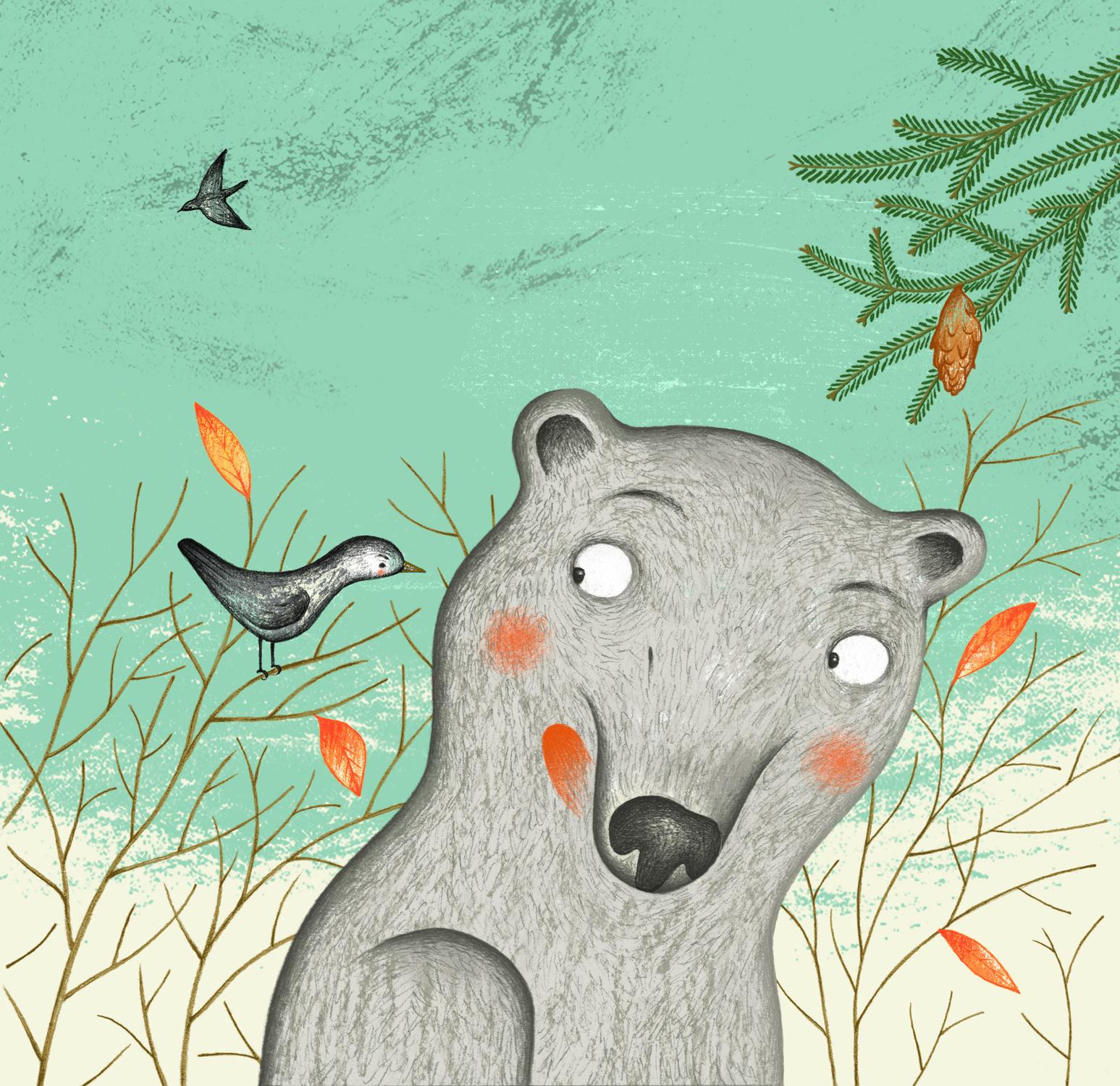 Le petit ours gris