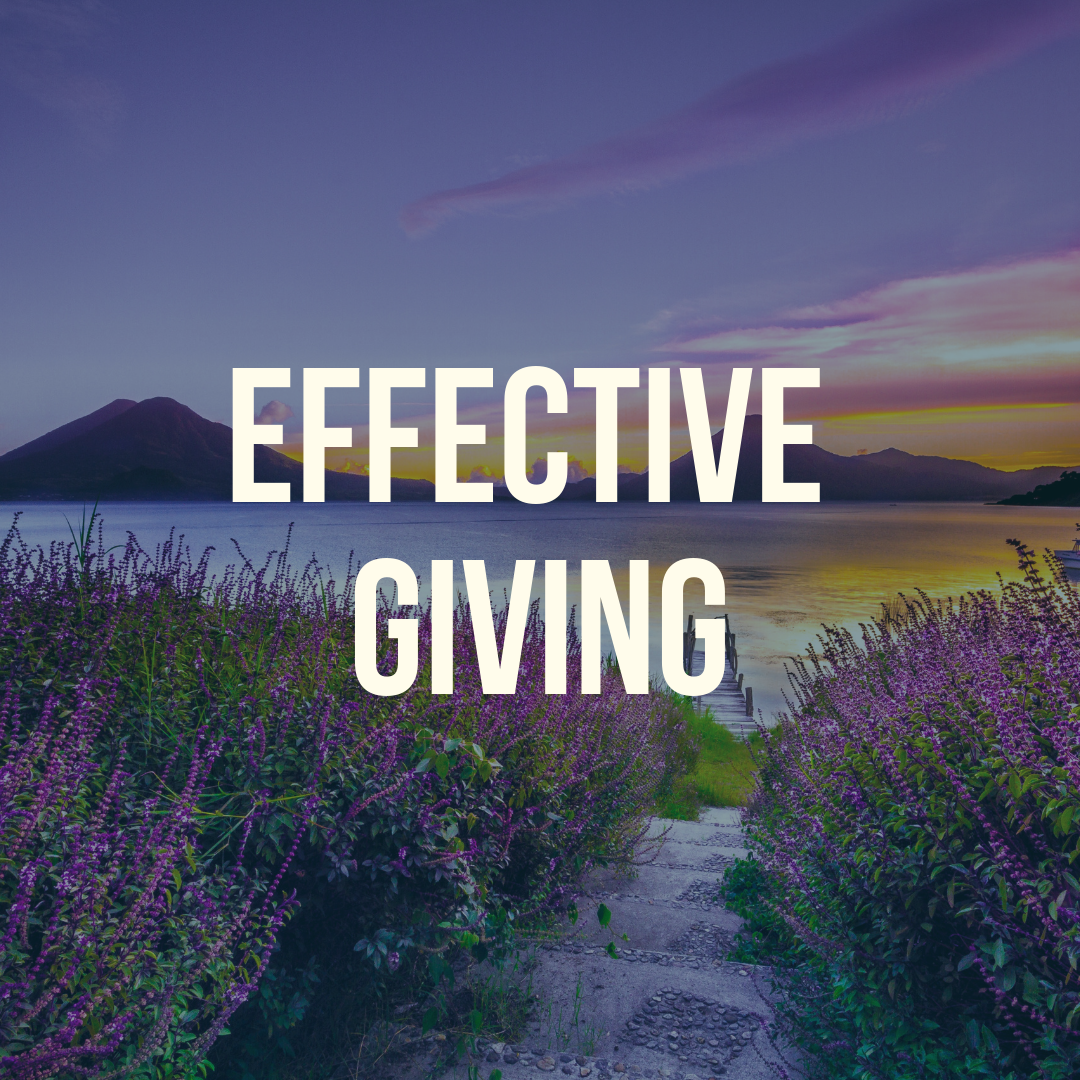 Effective Giving.png