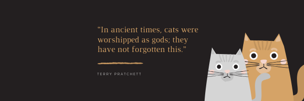 cats are gods.png