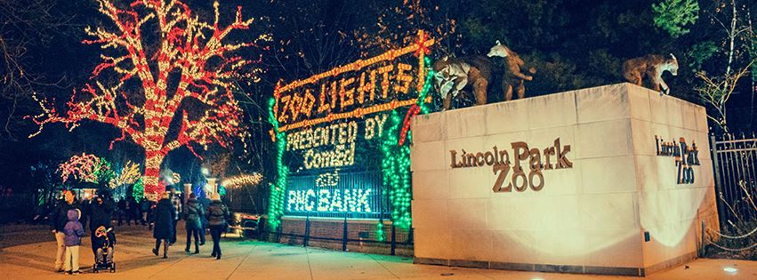lincoln-park-zoolights-chicago-il.jpg