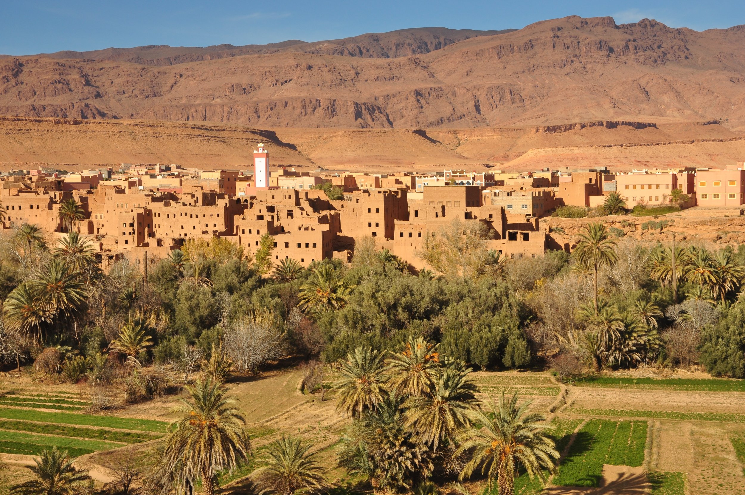 The Dades oasis.