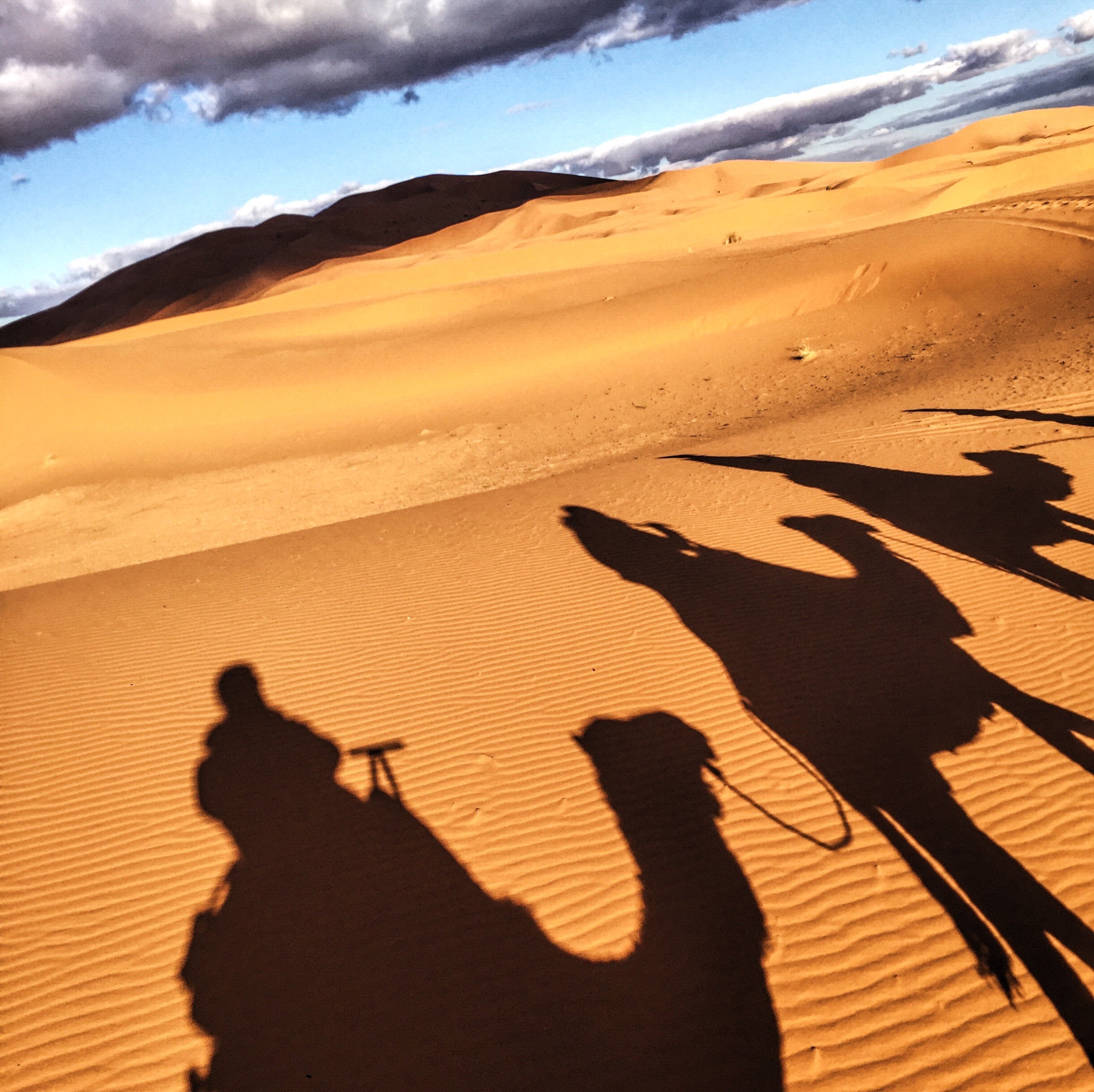 Camel-riding in the Sahara desert. Camels are still sometimes raised by nomadic people but are mostly used for tourists.