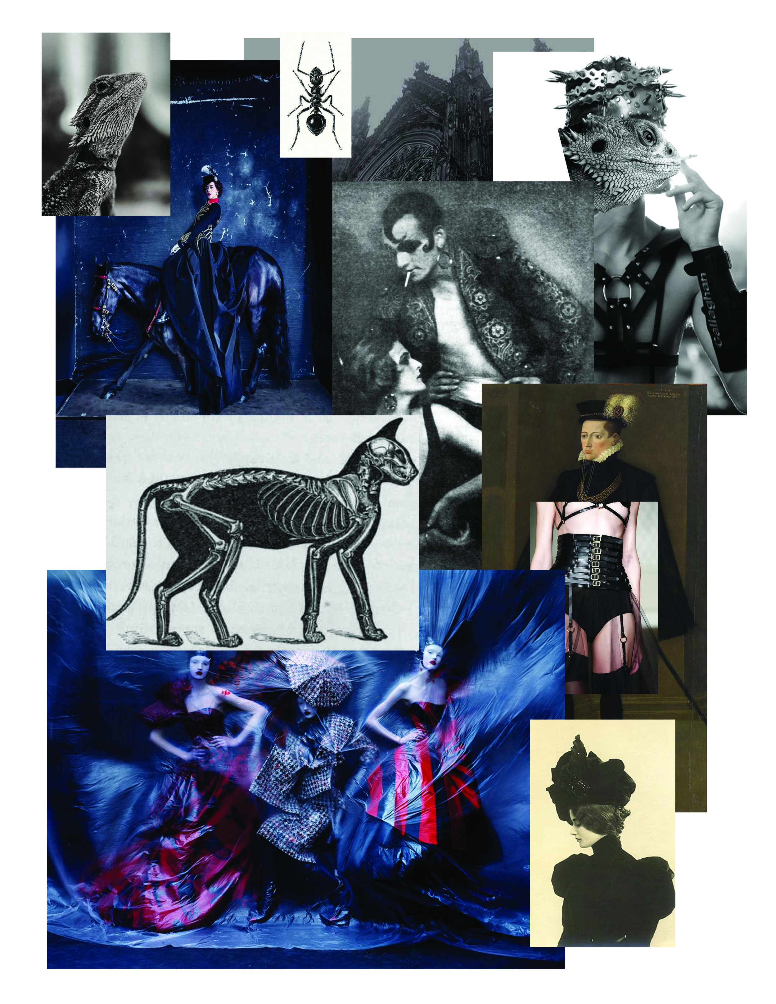 My Mood Board for the NO FEAR Collection.