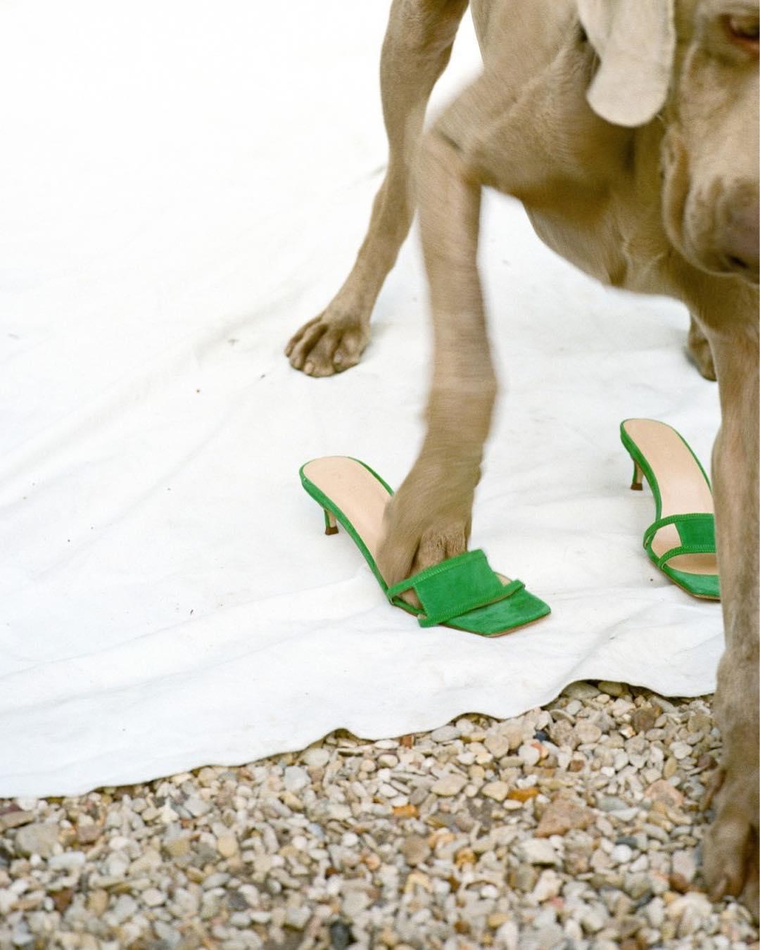 Virgo Sandals.jpg