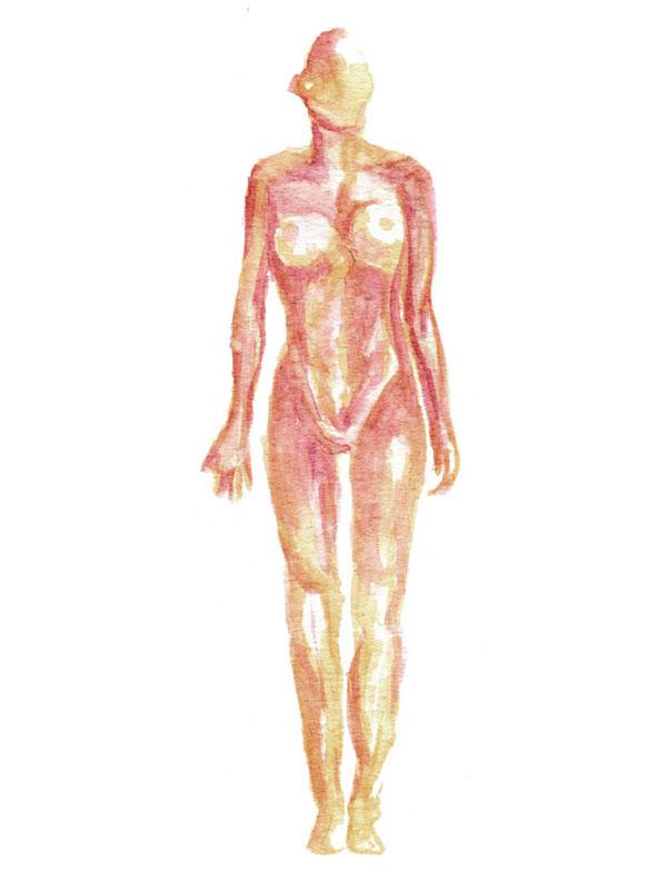 endocannabinoid-system-body-illustration-hempsley