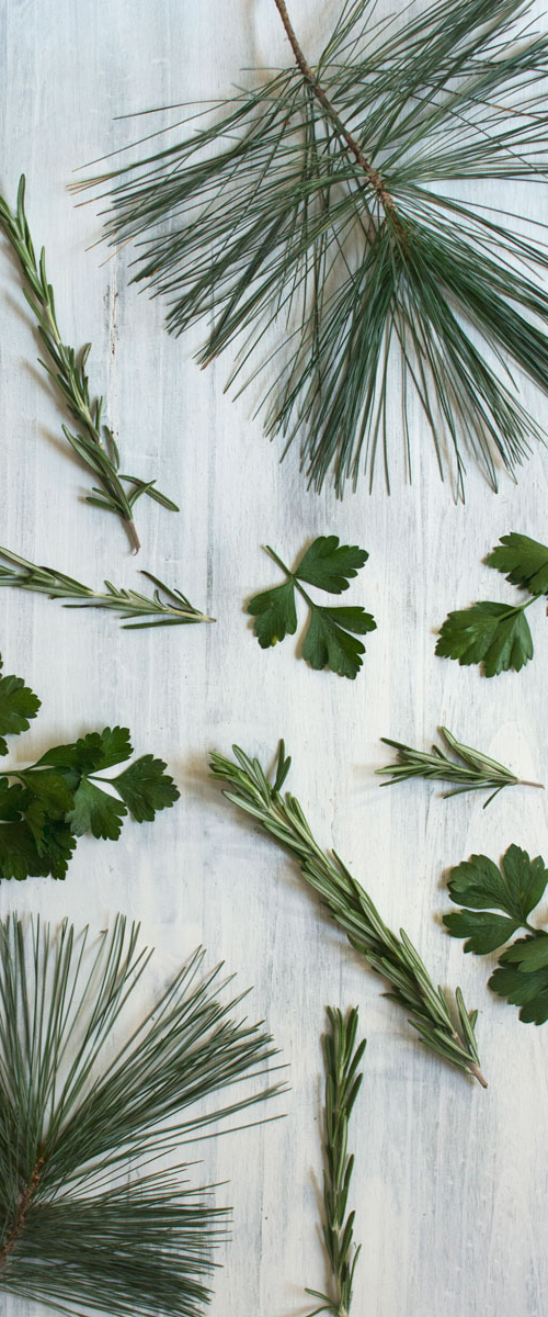 terpenes-introduction-pinene-hempsley