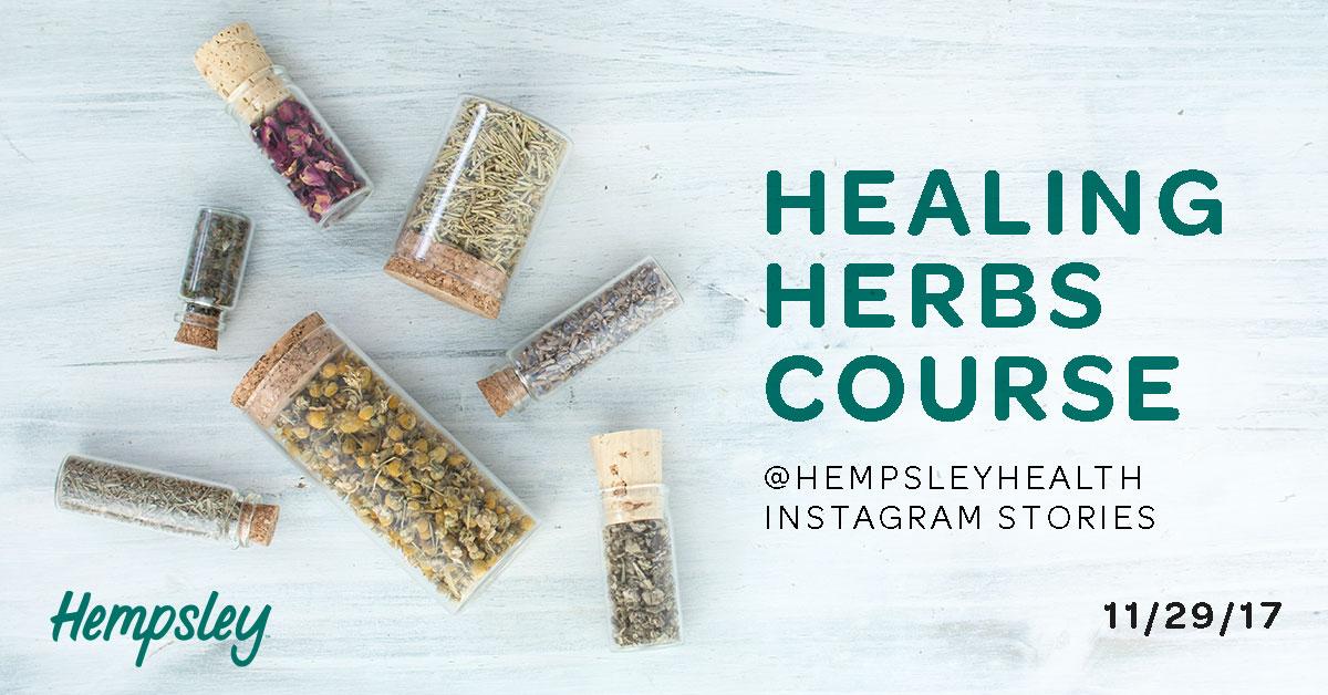 healing-herb-instagram-story-course-cannabis-hempsley