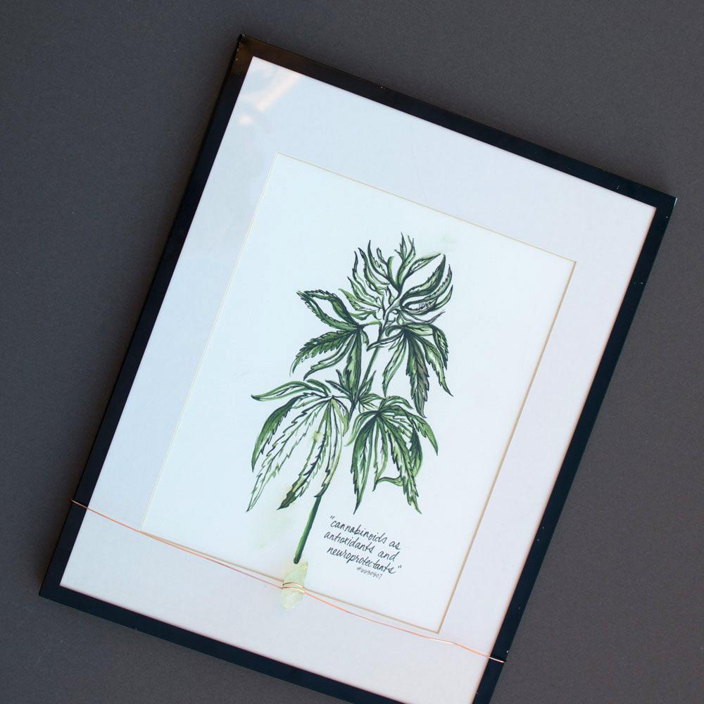 cannabis-illustration-patent-gift-kristen-williams-designs