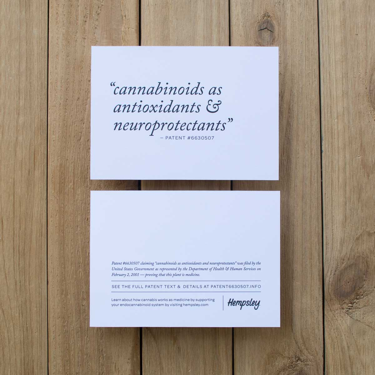 government-cannabis-patent-6630507-artwork-hempsley