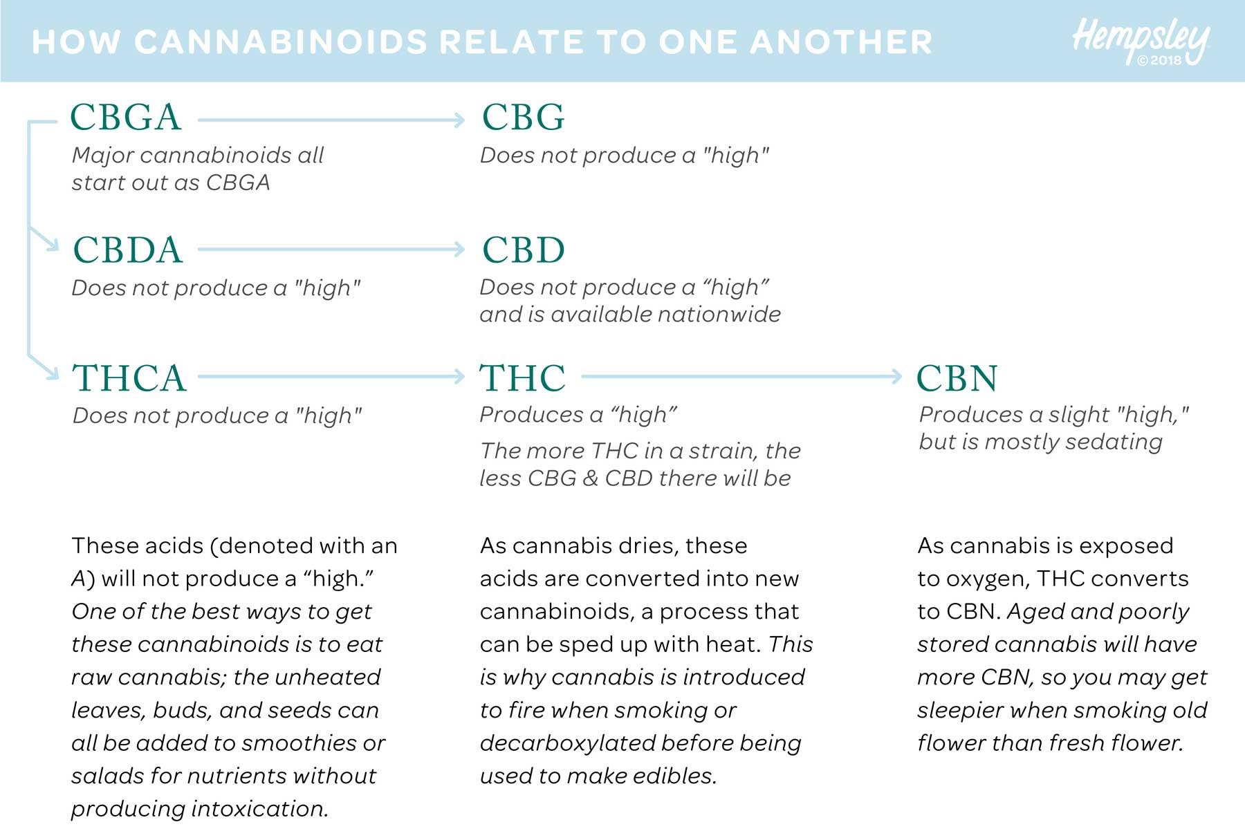 cannabinoids-chain-graphic-hempsley-MAR2018-1800PX.jpg