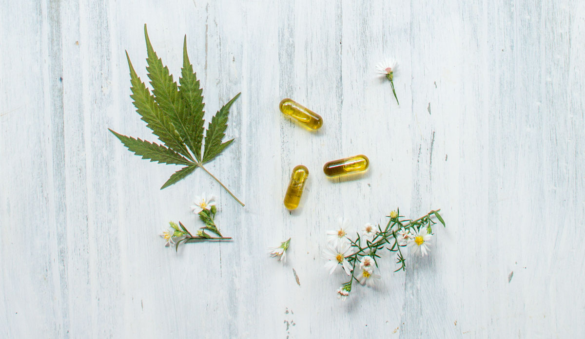 visualizes plant medicines for those learning about cbd isolate, full spectrum and broad spectrum