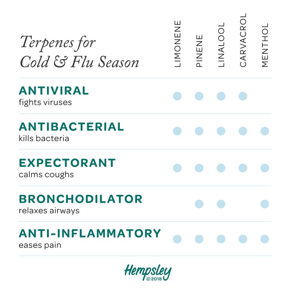 terpenes-cold-flu-season-cannabis-chart-hempsley.jpg