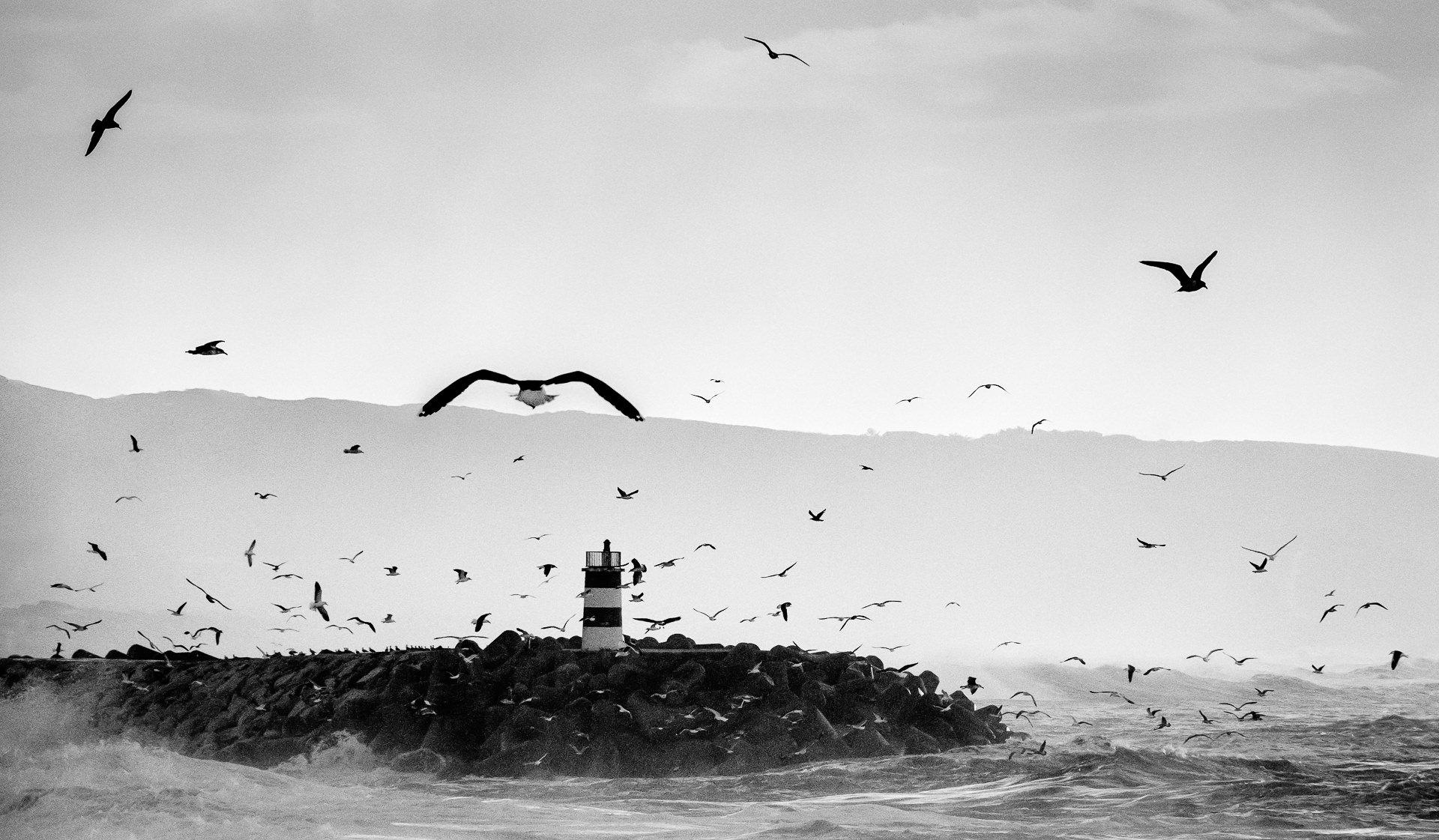 Tempestuous Sea III
