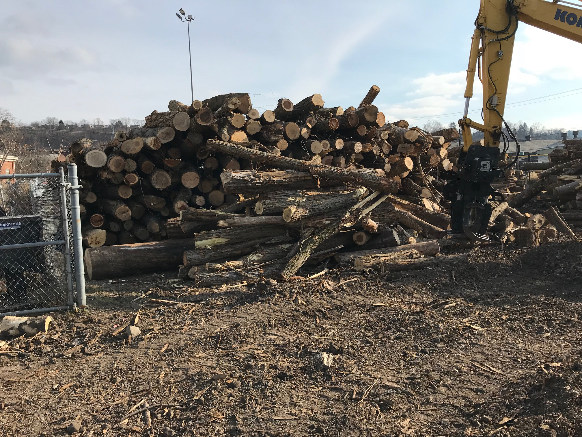 TREE SERVICES - Land ClearingRight of Way ClearingUtility ClearingGrubbingStump Removal