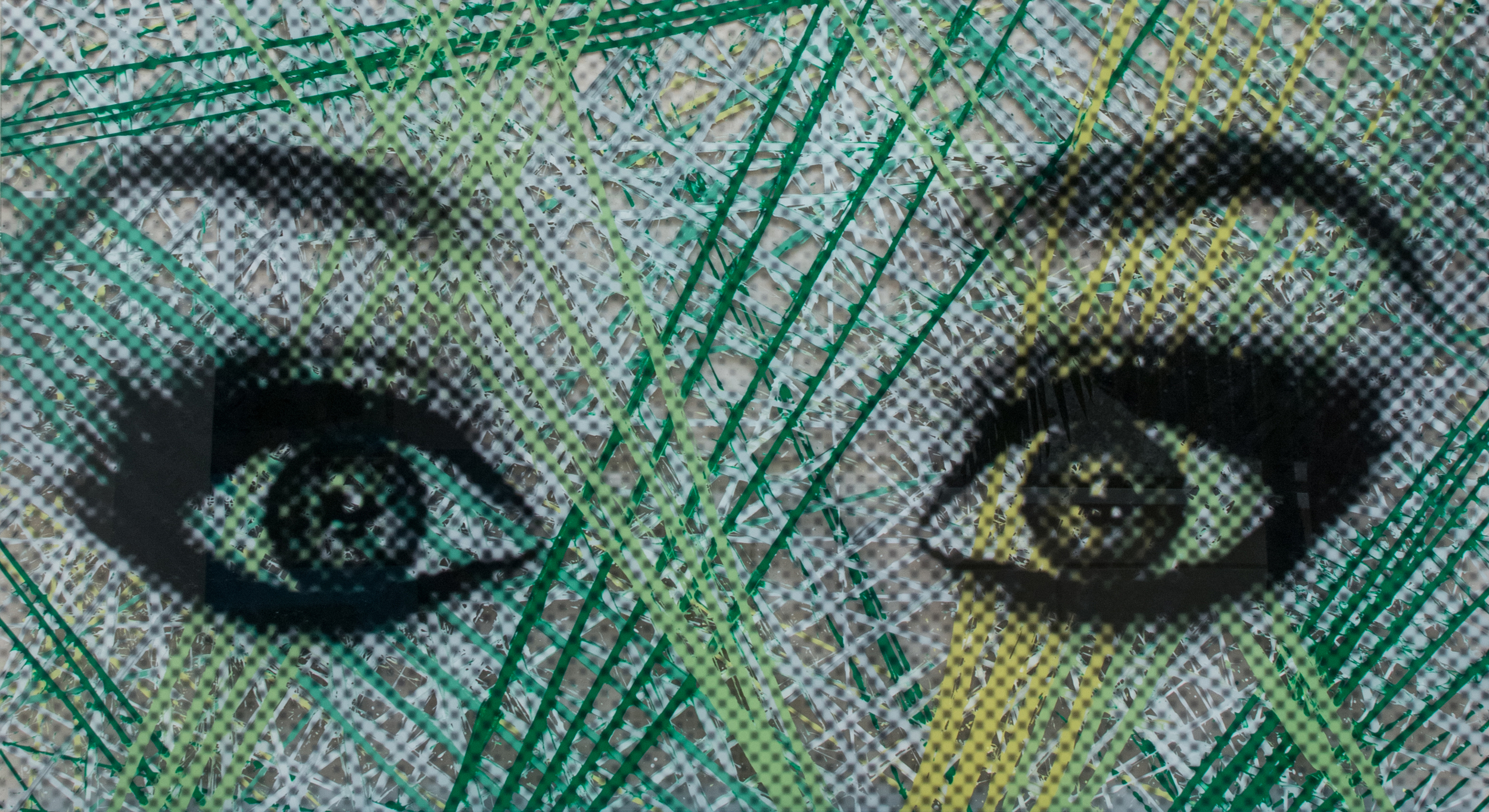 "Ojos Verdes   Acrylic & Print on Lucite, 27"" x 48"""