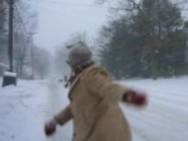 snowthrow.jpeg