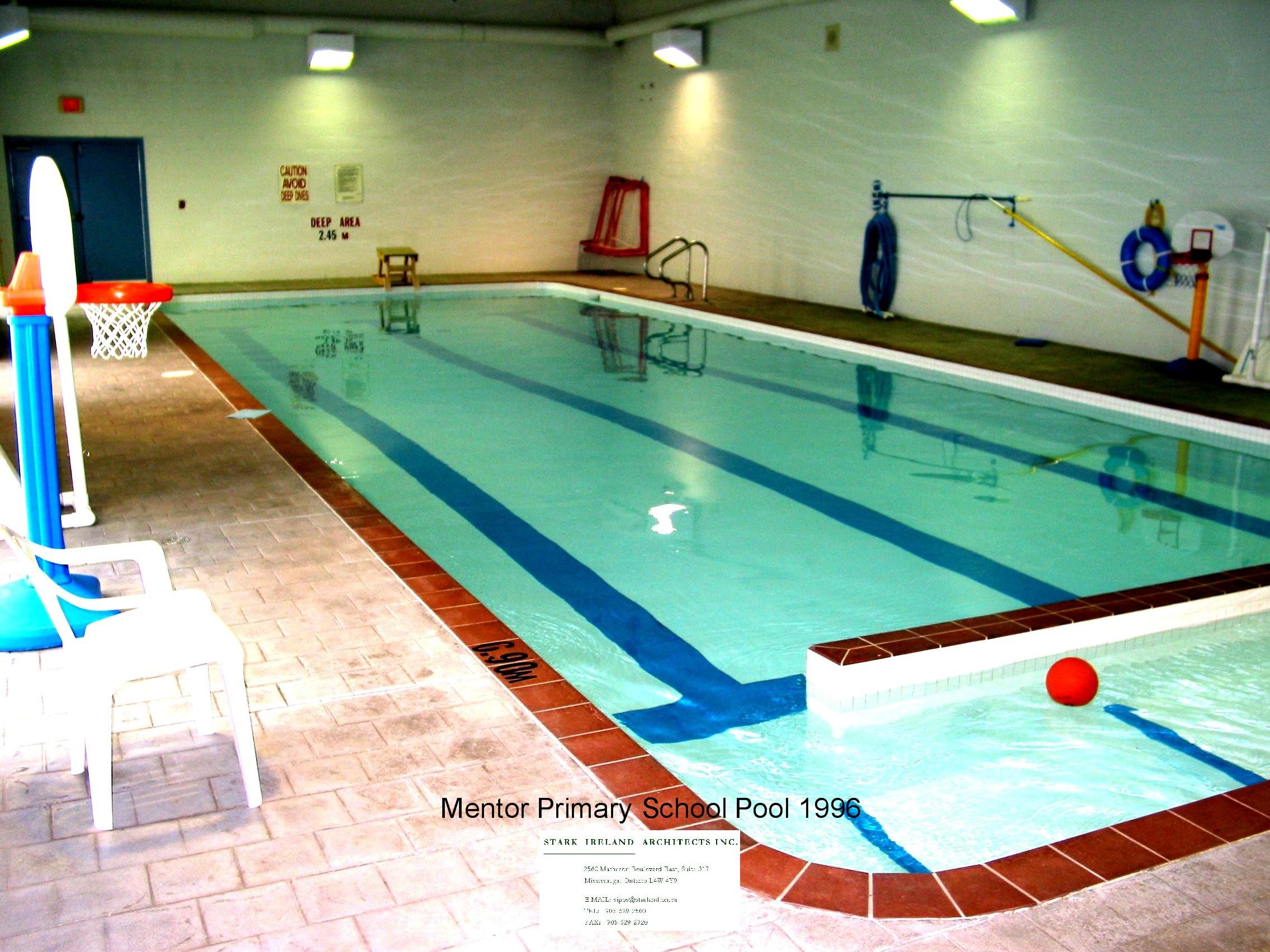 Mentor-Primary pool.jpg