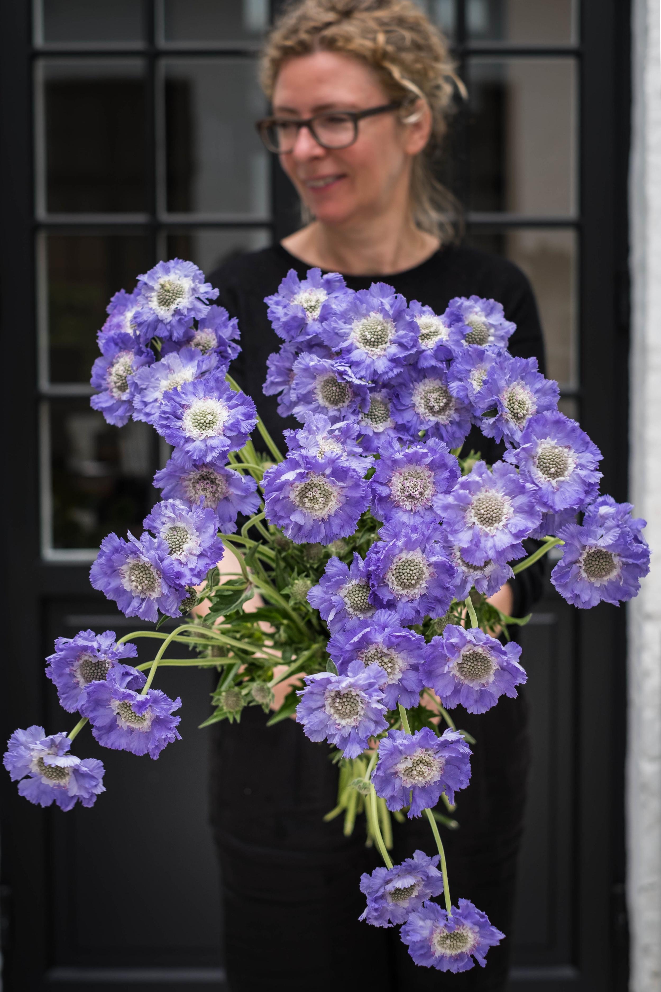 bloemen21-06-2.jpg