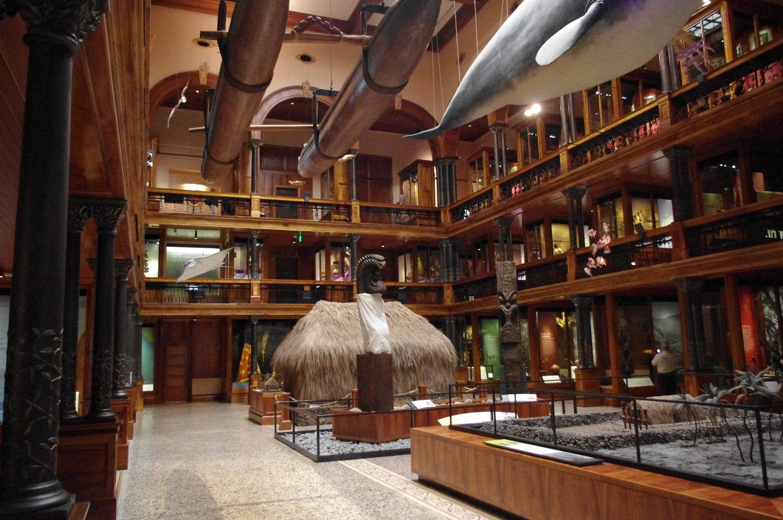 The Bishop Museum:  Photo: Calvin Wood