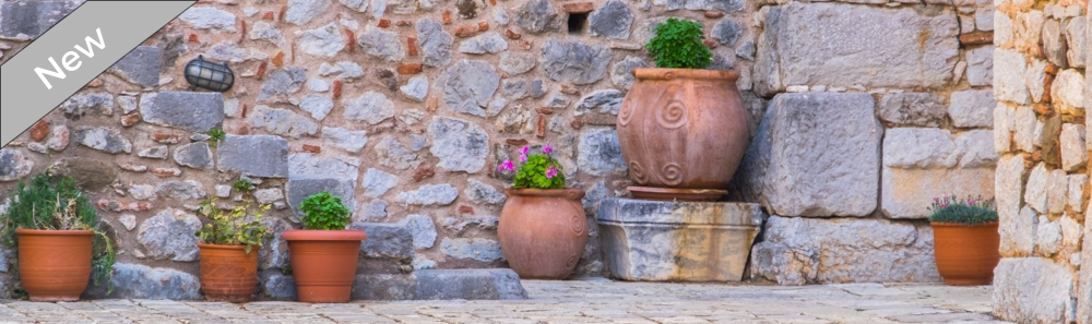 clay potted plants with flowers against rock wall