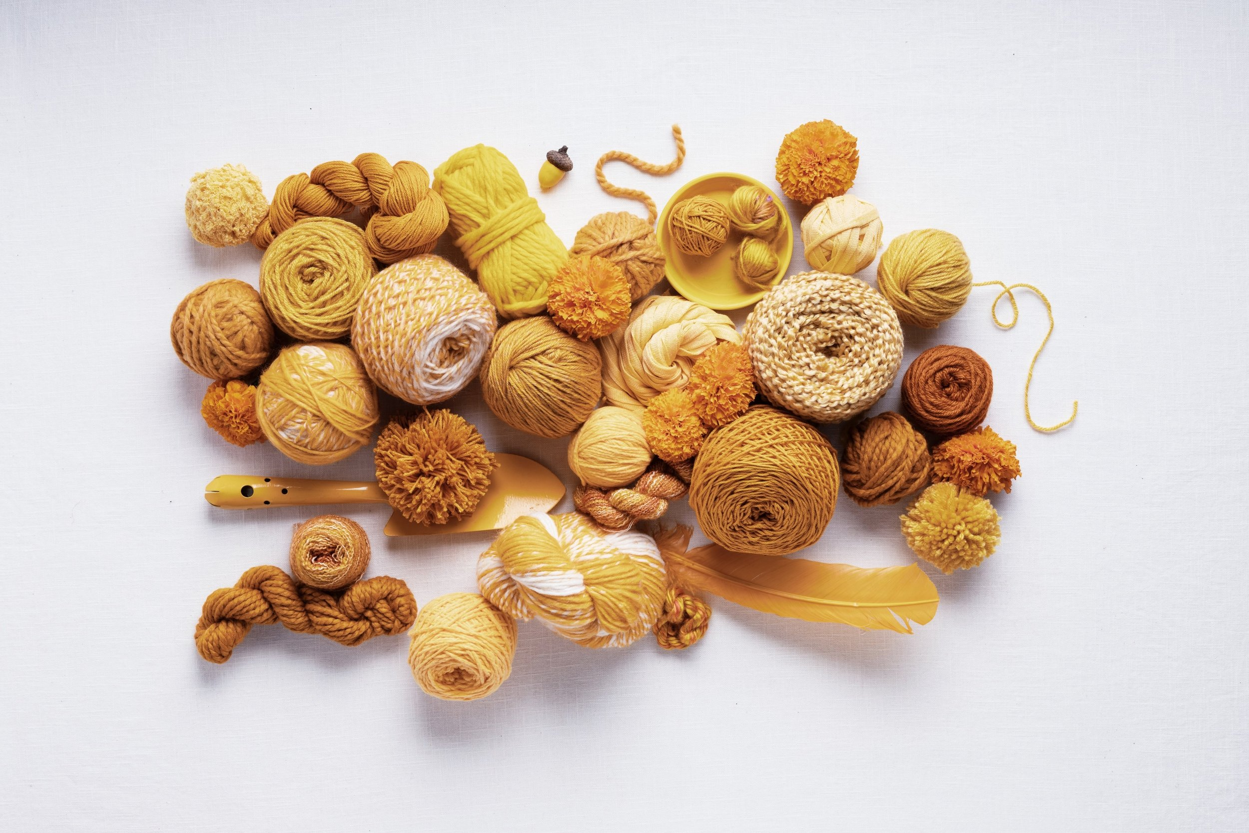 Marigold Color of the Month