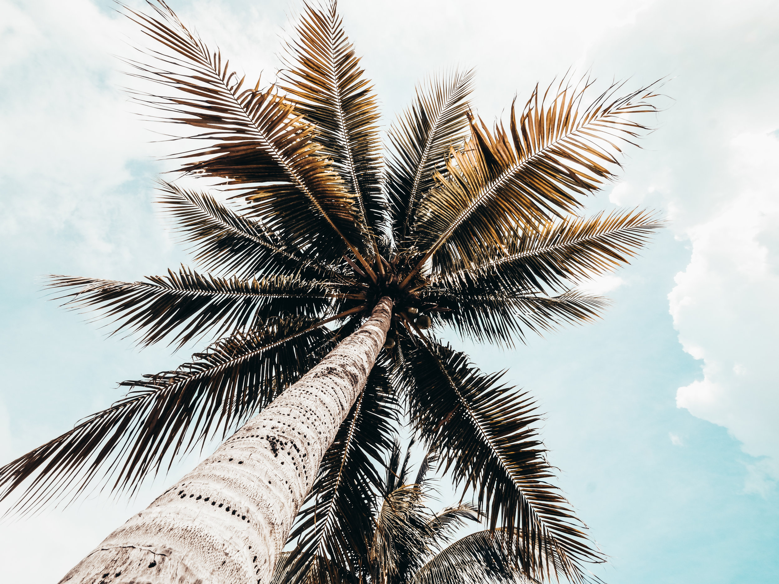 Old Man Bay Beach_CaymanIslands