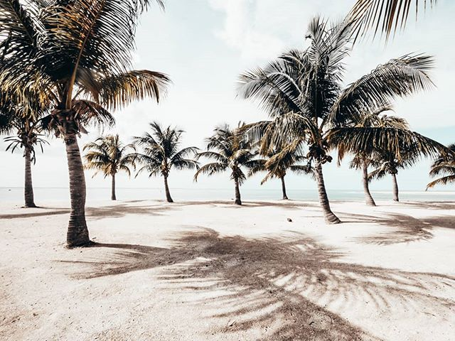 Thursday at one of our favourite spots. 🌴🌴 #Thisiscayman #Caribbean #Caymanislans