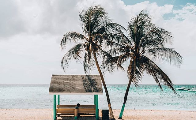 Would you like to know a little more about the best beaches in Cayman? 🌴🐚🐠 Check out the link in bio.    #thisiscayman #caymanislands #caribbean