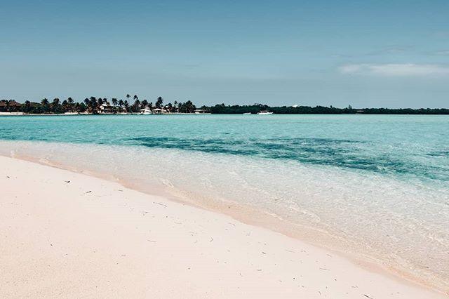 A slice of our paradise. 🐚🐠🌴🌺 #Thisiscayman #Caymanislands #Caribbean #Paradise