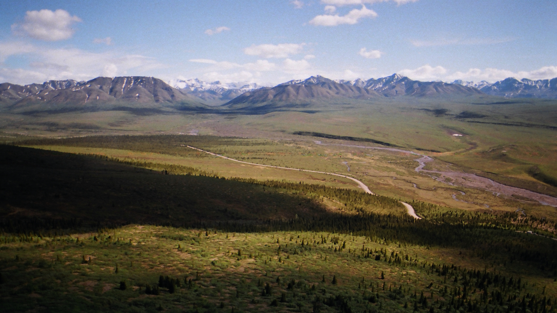 Denali National Park, Alaska 2014