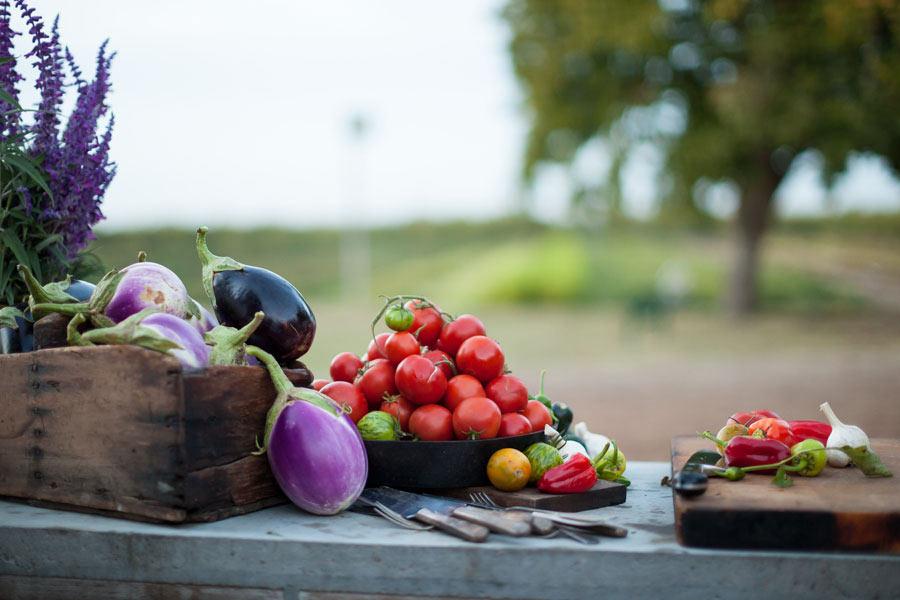 Food_Photography_farm_to_fork_fresh_produce_corn_onion_bean_pepper_lime_citrus_salad_raw_eating_vegan_crops.jpg